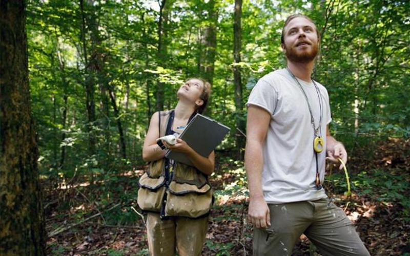 Two IU students conducting experiments in the forest.